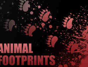 动物脚印笔刷