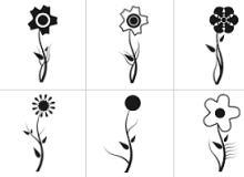 多种花朵笔刷