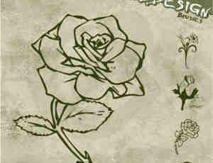 花卉艺术笔刷