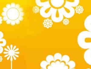 太阳花笔刷