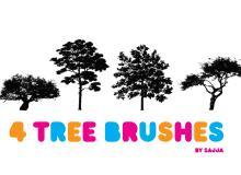 4种热带树木笔刷