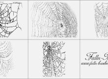 恐怖的蜘蛛网笔刷
