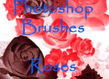 鲜红玫瑰花笔刷