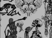 各种造型的骷髅笔刷