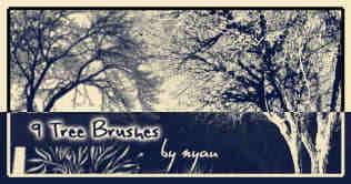 9种免费的树木笔刷下载