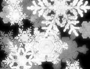 冰晶雪花笔刷