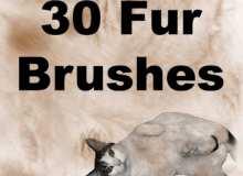 30种动物皮毛毛发笔刷