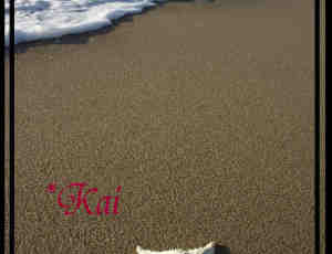 海边沙滩笔刷