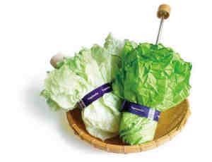 比较独特的创意大白菜雨伞