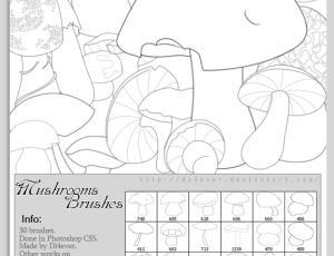 线条蘑菇笔刷