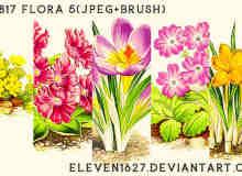 矢量式植物花朵笔刷