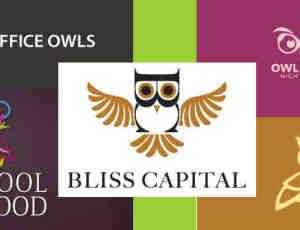 20个猫头鹰logo设计合集