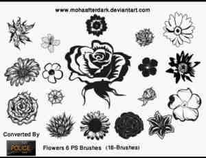 漂亮的矢量花朵笔刷