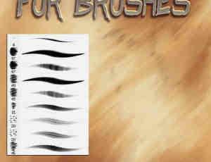 9种免费的皮毛绘制效果笔刷