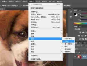 强大的Photoshop CC 14.0照片【去模糊防手抖】功能!