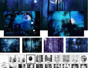 高清月夜森林场景PS笔刷