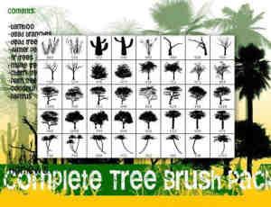热带雨林PS素材树木笔刷