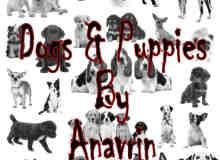 26种宠物狗笔刷