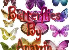 15种蝴蝶标本笔刷