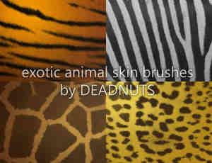 野生动物皮纹斑纹PS笔刷