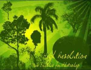 热带植物树木丛林PS笔刷下载