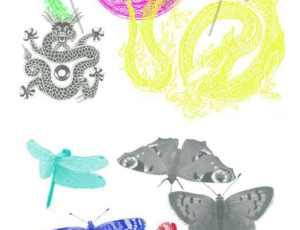 24个中国龙纹身纹饰图案和蝴蝶蜻蜓昆虫PS笔刷打包下载