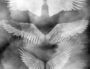 圣洁的天使羽翼翅膀PS笔刷下载
