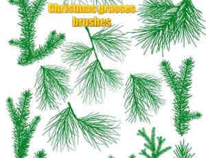 松针叶、圣诞树枝、树叶PS笔刷