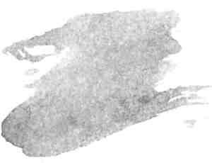 38种水彩画笔效果PS笔刷下载
