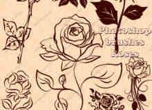 精致的玫瑰花印花图案PS笔刷