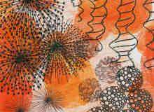 27种蒲公英植物花纹PS笔刷