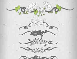 漂亮的牵牛花艺术绘画图案PS笔刷
