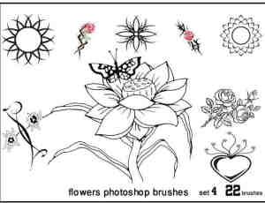 矢量花朵花边花纹PS装饰笔刷下载#.4