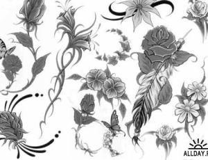 经典漂亮的手绘素描式花朵PS笔刷