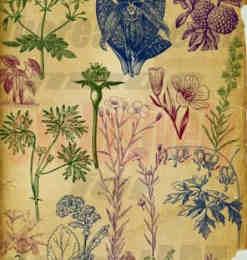 素描手绘植物花草树木笔刷素材-植物笔刷 第 21 页