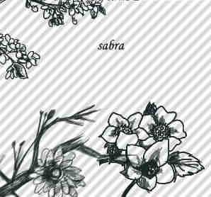 漂亮的中国风水墨桃花PS笔刷