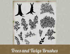 矢量树木、树叶笔刷下载