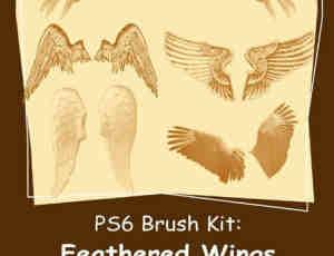 漂亮的天使的羽翼翅膀笔刷