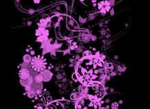 精细漂亮的植物花纹PS笔刷下载