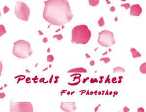 粉色花瓣飞舞PS笔刷素材