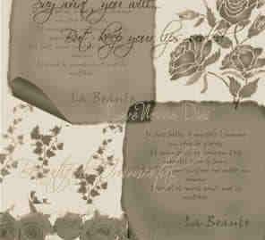 枫叶、玫瑰花、羊皮纸背景PS笔刷