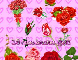 真实的玫瑰鲜花PS笔刷素材