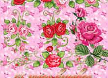 漂亮鲜艳的矢量玫瑰花PS笔刷