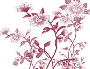 矢量花卉图案PS笔刷素材下载