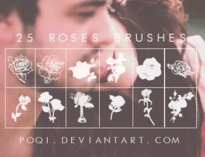 手绘玫瑰花、鲜花图案PS笔刷下载