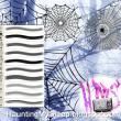 多种蜘蛛网素材photoshop笔刷