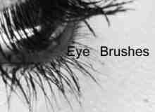 高清真实的眼睛图片photoshop笔刷素材