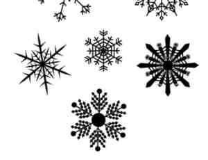 漂亮的雪花花纹图案PS笔刷素材下载