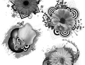 鲜花潮流背景装饰photoshop笔刷素材