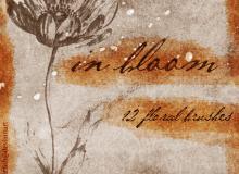 手绘素猫式花朵、鲜花photoshop笔刷素材